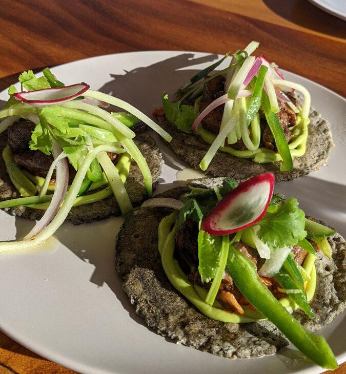 Salvia-Blanca-tacos